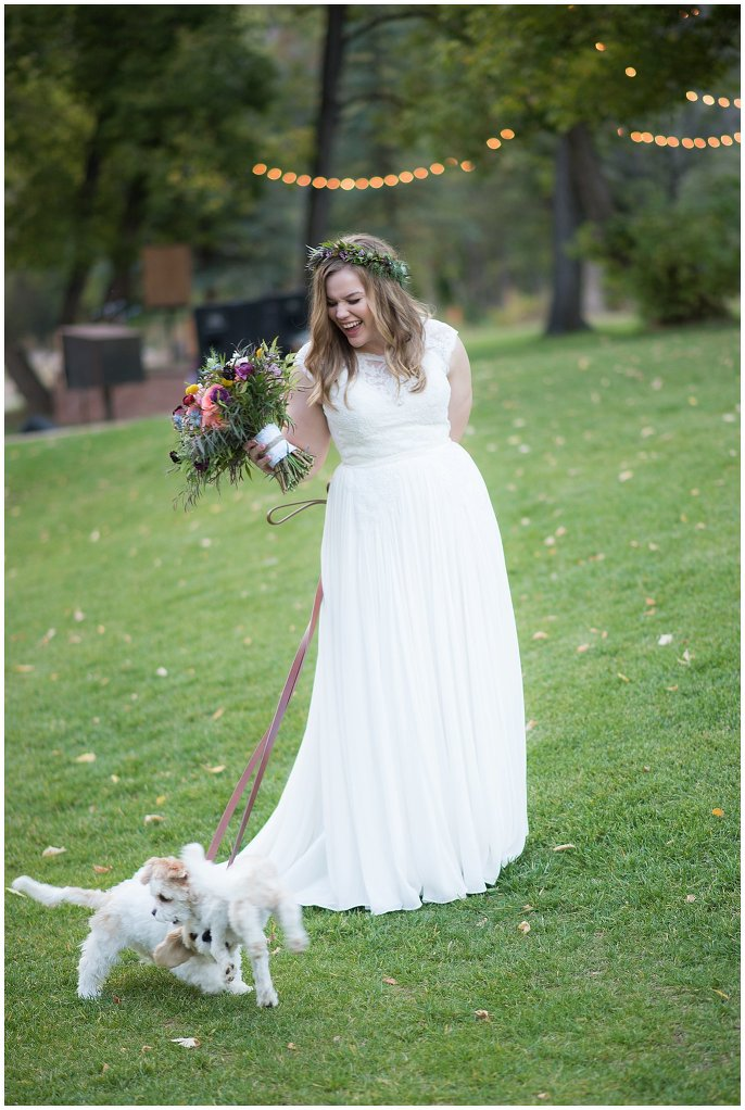 bride with cute dogs Lyons mountain wedding photo