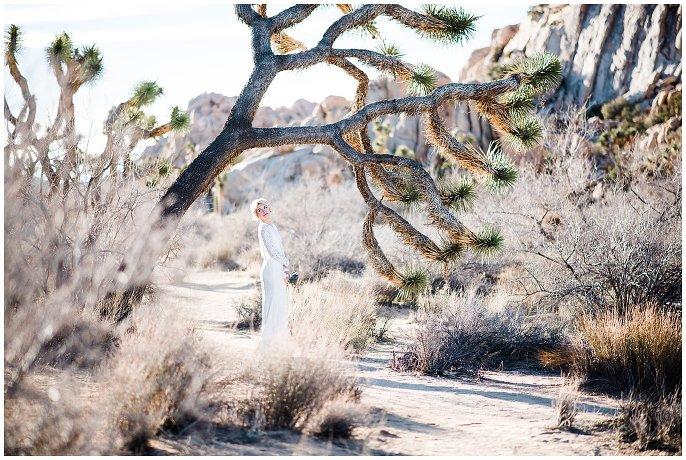 bride with joshua trees in dessert photo