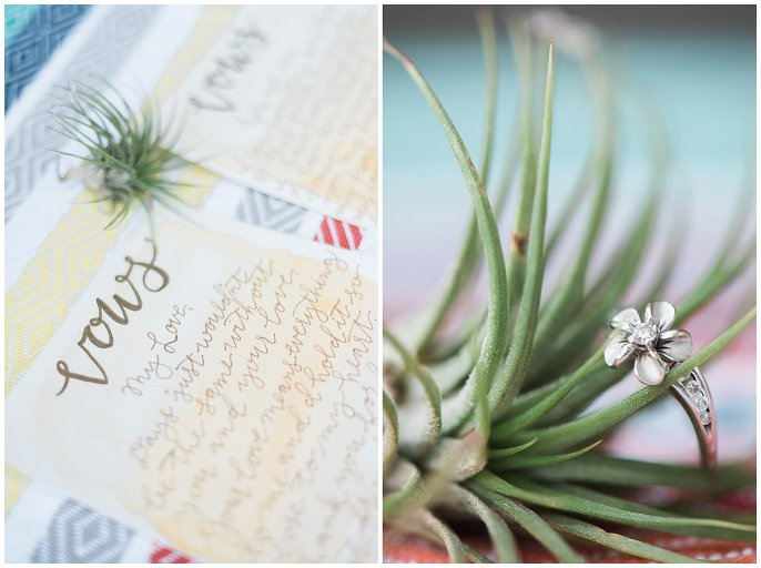engagement ring and air plant photo