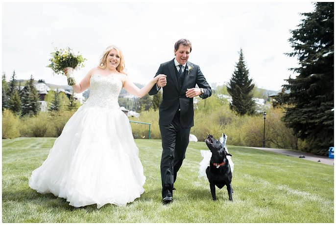 bride groom and dog photo
